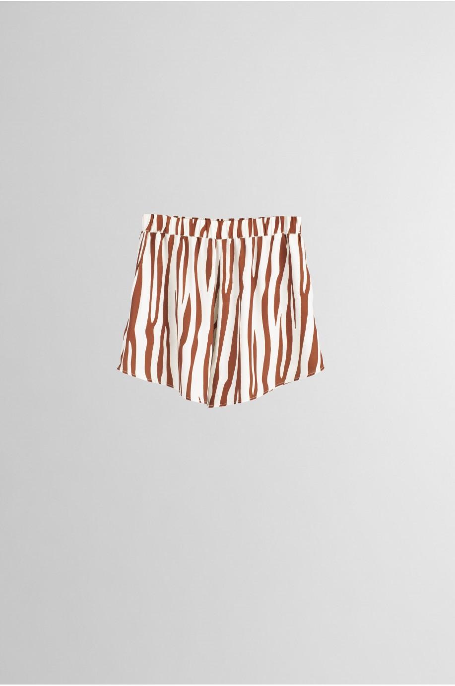 Short Zebra